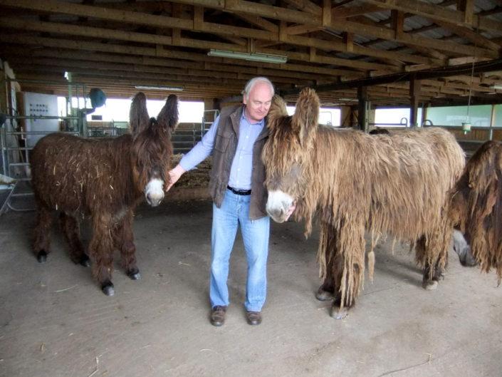 Die Poitou-Esel und Dr. Hans-Jürgen Zastrow